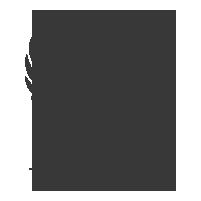 ECOSOC United Nations logo